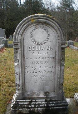 Celia Maria <i>Dow</i> Carver
