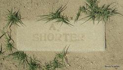 A. Shorter