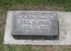 A. W. Backlund