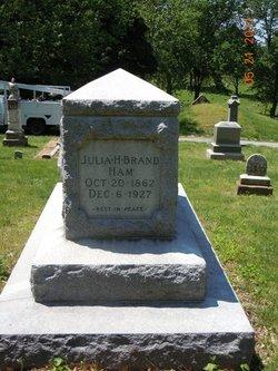 Julia H Brand