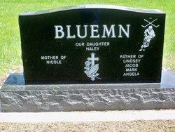 Mark A. Bluemn