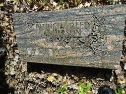 Patricia Mary <i>Reed</i> Anderson