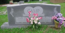 Harry W. Camp