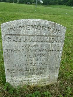 Catharine J. Clark