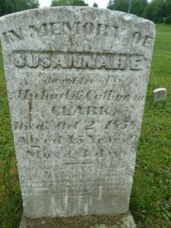 Susannah E. Clark