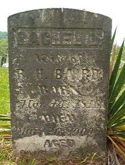 Rachel Louisa <i>Councill</i> Baird