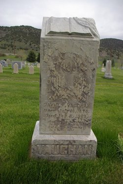 David P. Vaughan