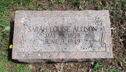 Sarah Louise <i>Schattgen</i> Allison
