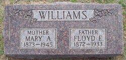 Floyd Emmett Williams
