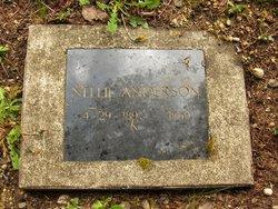 Nellie Marie <i>Niemila</i> Anderson