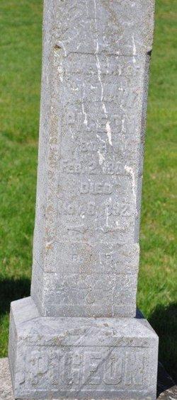 Ann Mary Pigeon