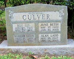 Robert Leon Culver