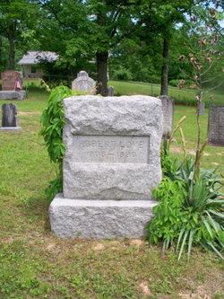 Robert W. Love, Jr