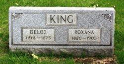 Delos King