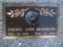 Cheryl Ann Brandon