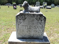 Sam Grimmett