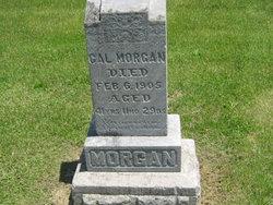 Calvin C. Cal Morgan