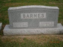 Thomas E Barnes