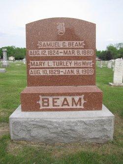 Mary Louisa Turley Beam