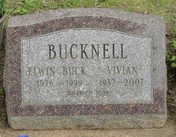 Vivian <i>Searles</i> Bucknell