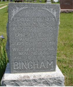Emily B. Amelia? <i>Plumb</i> Bingham
