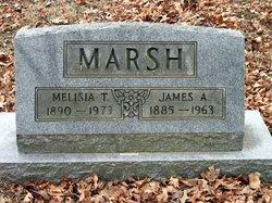 James A Marsh