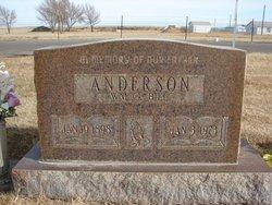 William G Anderson