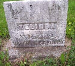 Zelinda <i>Dyer</i> Babcock