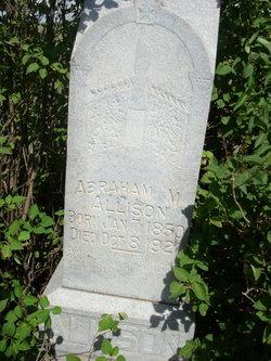 Abraham Monroe Allison