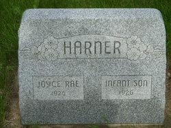 Joyce Rae Harner