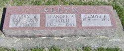 Harry Walker Allyn