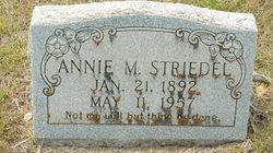 Annie M Striedel