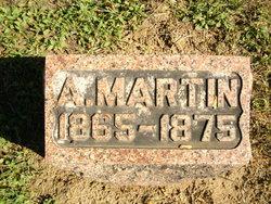 A. Martin Bergman