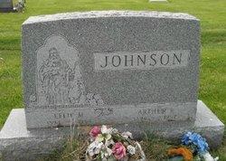 Effie M. <i>Belk</i> Johnson