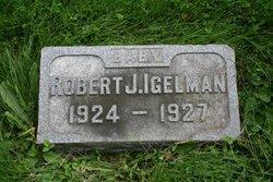 Robert Joel Igelman