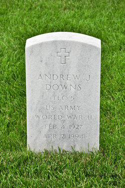 Andrew J Downs