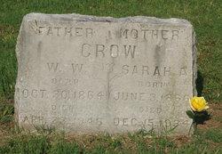 Sarah Ann <i>Bledsoe</i> Crow