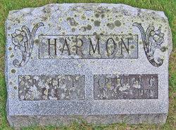 Gretchen <i>Calkins</i> Harmon