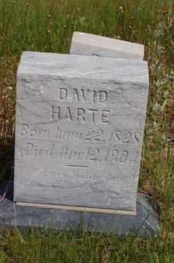 David Harte