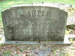Lucy D. Carter