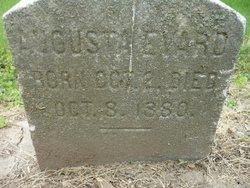Augusta Evard