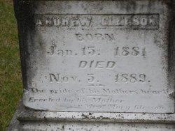 Andrew Gleeson