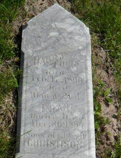 Harry Louis Christison