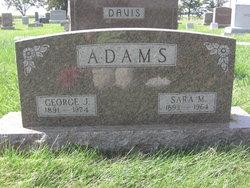 George James Adams