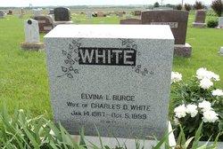 Elvina L. <i>Burge</i> White
