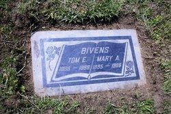 Mary Ann <i>Rice</i> Bivens