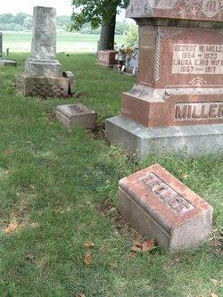 Laura E Miller