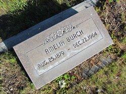 Amelia <i>Peters</i> Burch