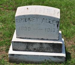 Bridget <i>Doyle</i> Allen