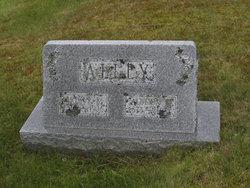 Arthur Riley Alley